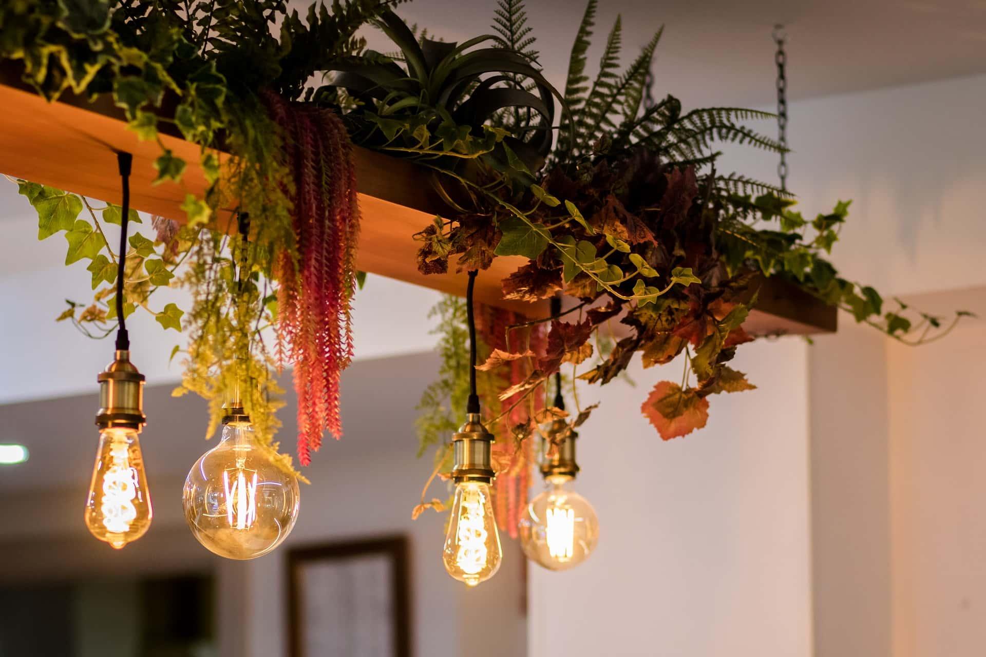 Lampara Plantas y Luz-min
